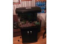 Two foot fish tank and cabinet