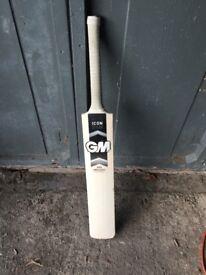 Gunn & Moore Cricket Bat