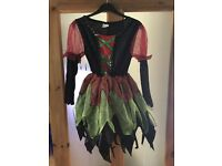 Children's Witch Fairy Costume *New*