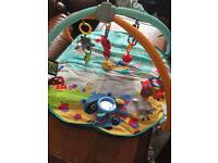 Fisher rice playmat £15