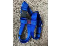 Dog harness and lead