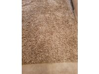 XXX large size deep pile Beige and Brown rug