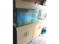 5x2x2 ft Beach wood marine reef tropical fish tank aquarium with setup