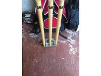 Cricket stumps