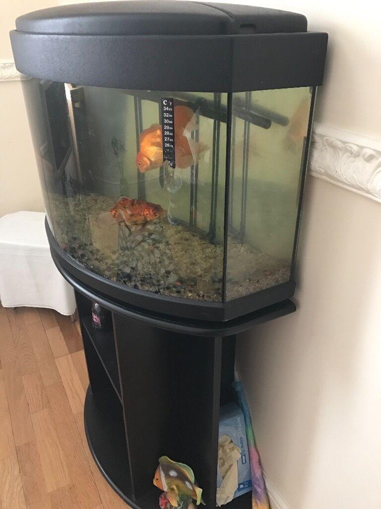 Aquarium fish tank for sale in london - Fish Tank For Sale Image 1 Of 8