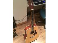 crafter semi acoustic