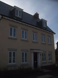 house share - newbuild house with 4 bedrooms. Within walking distance of Bedford Station