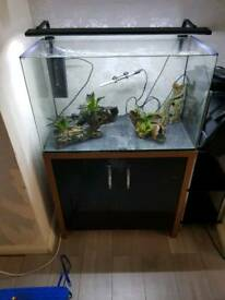 Fish tank/stand and excessories