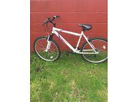 Mountain Bike White