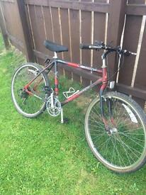 Raleigh mustang mountain bike