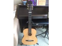 Burswood Classical Guitar with carry bag