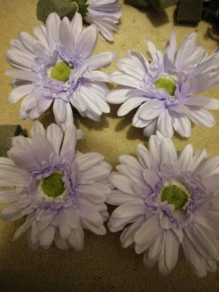 Lilac Daisy Flower Heads Suit Up Cycling Project In Kirkintilloch