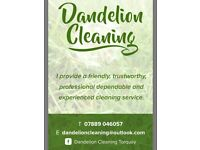 Dandelion Cleaning Service for all your domestic and small business needs in the Torbay area