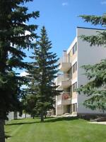 Choose Your INCENTIVE in 2 Bd w/ Balcony ~ Town of Stony Plain