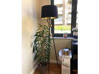 Tripod Floor Lamp - Black £30