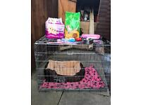 Dog cage and accessories