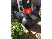 Stand alone punch bag