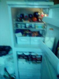 Upright fridge freezer (kelvinstor make)