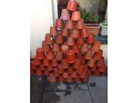 70 pcs 1L Plant Pots £6 only.