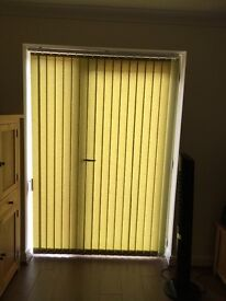 2 x Green Verticle Blinds
