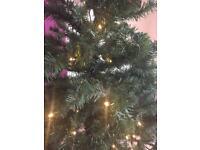Christmas tree and lights.
