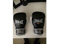 14oz boxing gloves