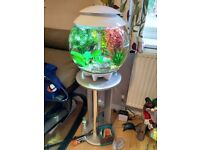 Biorb Halo 30l Tank with Stand and Accessories