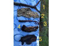 Reptile Logs and Wooden Viarium Accessories