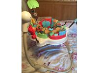 Fisher Price Baby Bouncer / Jumperoo