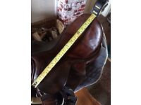 Selection of saddles for sale