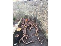 Wood for log burner