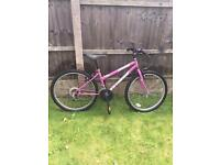 """UNIVERSAL EXTREME 24"""" MOUNTAIN BIKE, fully working, some surface rust"""