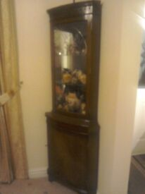 Mahogany and glass display corner cabinet in exalant condition with lighting from the top.