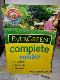 Evergreen lawn complete