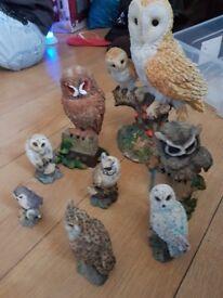 joblot of owl figures 8 in total