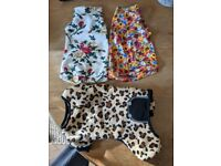 Sphynx cat/ dog clothes