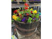 Flower displays in Oak Barrel Planters
