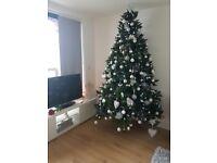 Enormous Christmas tree