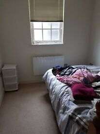 Double Bedroom to let in Town Centre- UNTIL November 2017