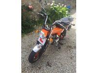 Skyteam Skymax 125cc Monkey bike Honda Dax Low Millage