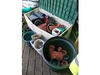 Plant pots & trays