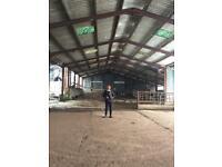 Steel frame barn for sale