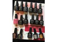 Full Gel / Shellac Nail Manicure Kit including lamp