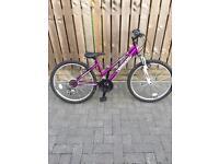 "Girls nearly new mountain bike 24"" wheel"