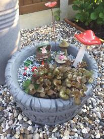 Fairy garden all complete £25