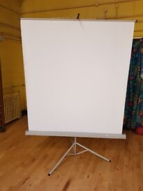 Portable projector screen with built in stand