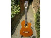 Yamaha CGX-171 CC electro-nylon guitar with mic/piezo pickup system (James Taylor,etc) includes case