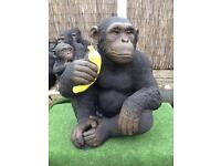 Monkeys gorillas chimps stone be quick