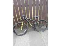 Bike bizango voodoo 29er