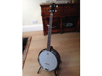 Barnes and Mullins Perfect 5 string banjo